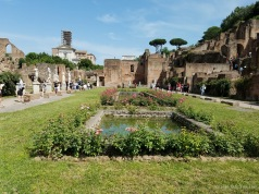 Ruins at the Forum Romanum / Roman Forum
