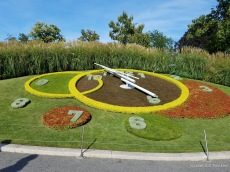 """L'horloge fleurie"" (or ""flower clock"") in Geneva"