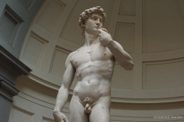 David, by Michelangelo Buonarroti