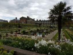 The flowers at Kensington Gardens were all white in special commemoration of Princess Diana