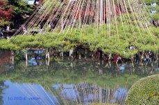 Japan Kanazawa 2010 (2)