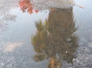 Random puddle (2)
