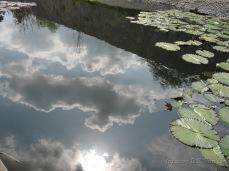 Van Nuys Japanese Garden 2009 (1)