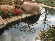 Van Nuys Japanese Garden 2009 (2)