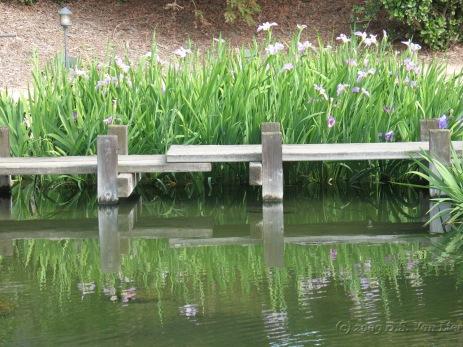 Van Nuys Japanese Garden 2009 (3)